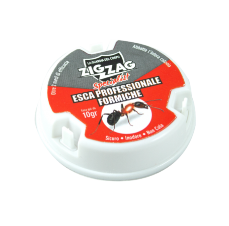 Zig Zag Insecticide Bait for Ants Specialist