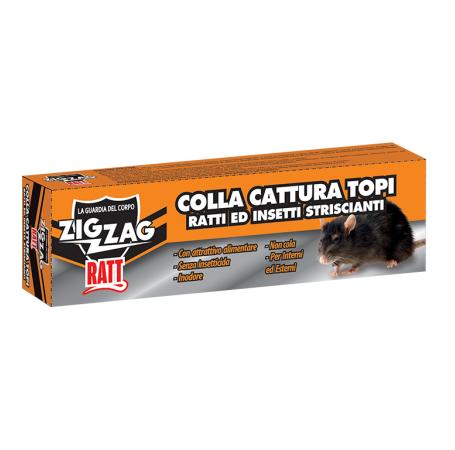 Zig Zag Ratt Colla